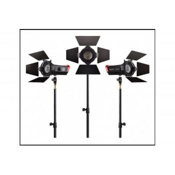 Студийный свет Aputure Light Storm LS-mini 20 flight kit (ddc)