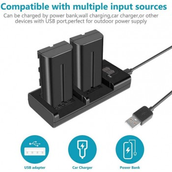 Двойное зарядное у-во DL-NPF970/FM500/FM50 Type C и micro USB Charger с инфо индикатором